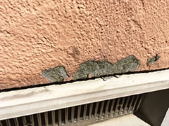 外壁のヒビや塗装の剥がれが気になる